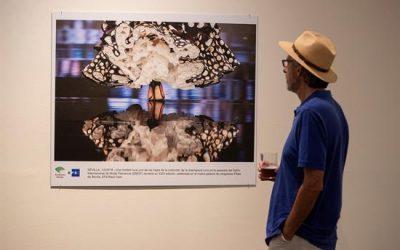 Cincuenta fotografías de EFE recorren la Andalucía del 2018