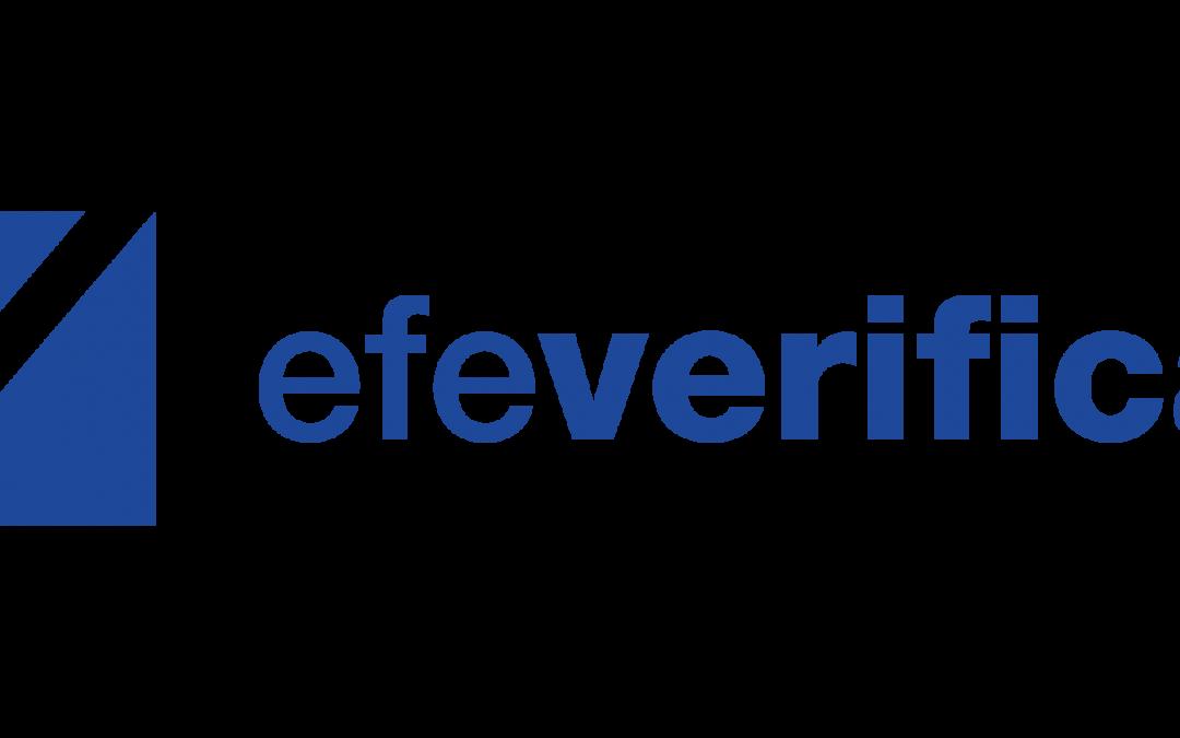 Los trabajos de EFE Verifica, en el chatbot de la Red Internacional de Verificación de Datos en WhatsApp